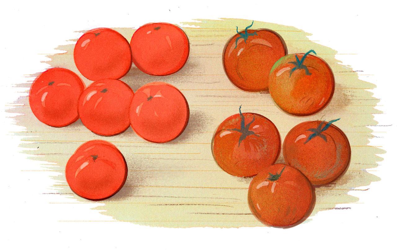 8VZEEkheR7KhbrNPtYow_tomatoes.jpg