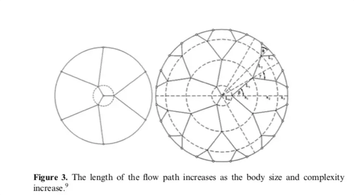 Screenshot_2019-09-10 Physics explains why time passes faster as you age(1).png