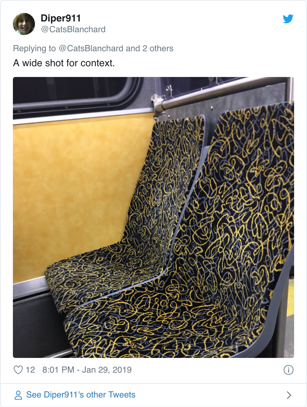 Screenshot_2019-12-19 The Good, Bad, and Ugly Public Transit Seat Covers of the World.jpg