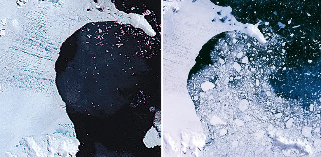 r1287_fea_antarctica_j-f46fe733-9fb2-4600-be96-9cfff72d04d0.jpg