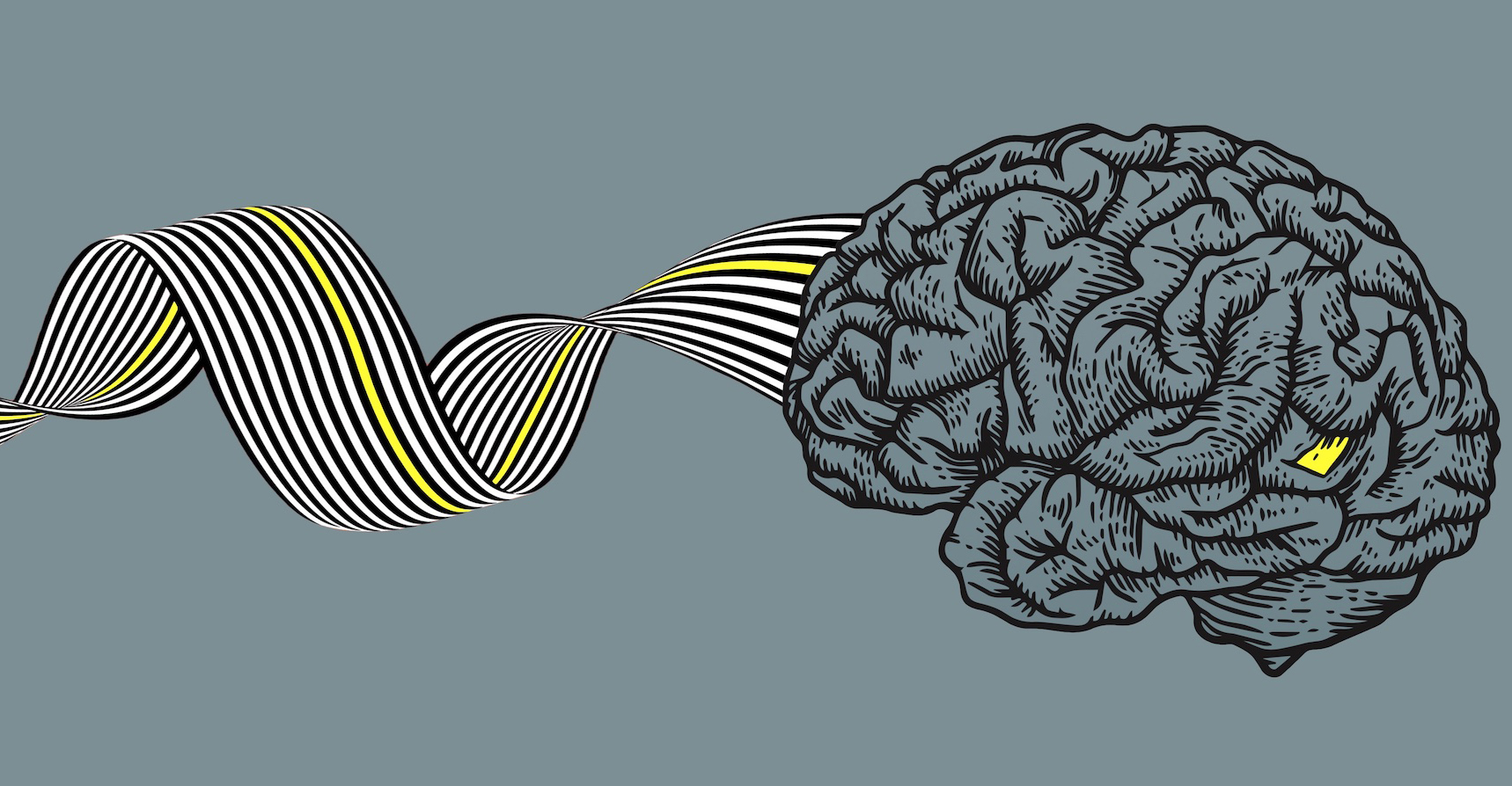 brain-misinformation-yellow.jpgcrop.jpg