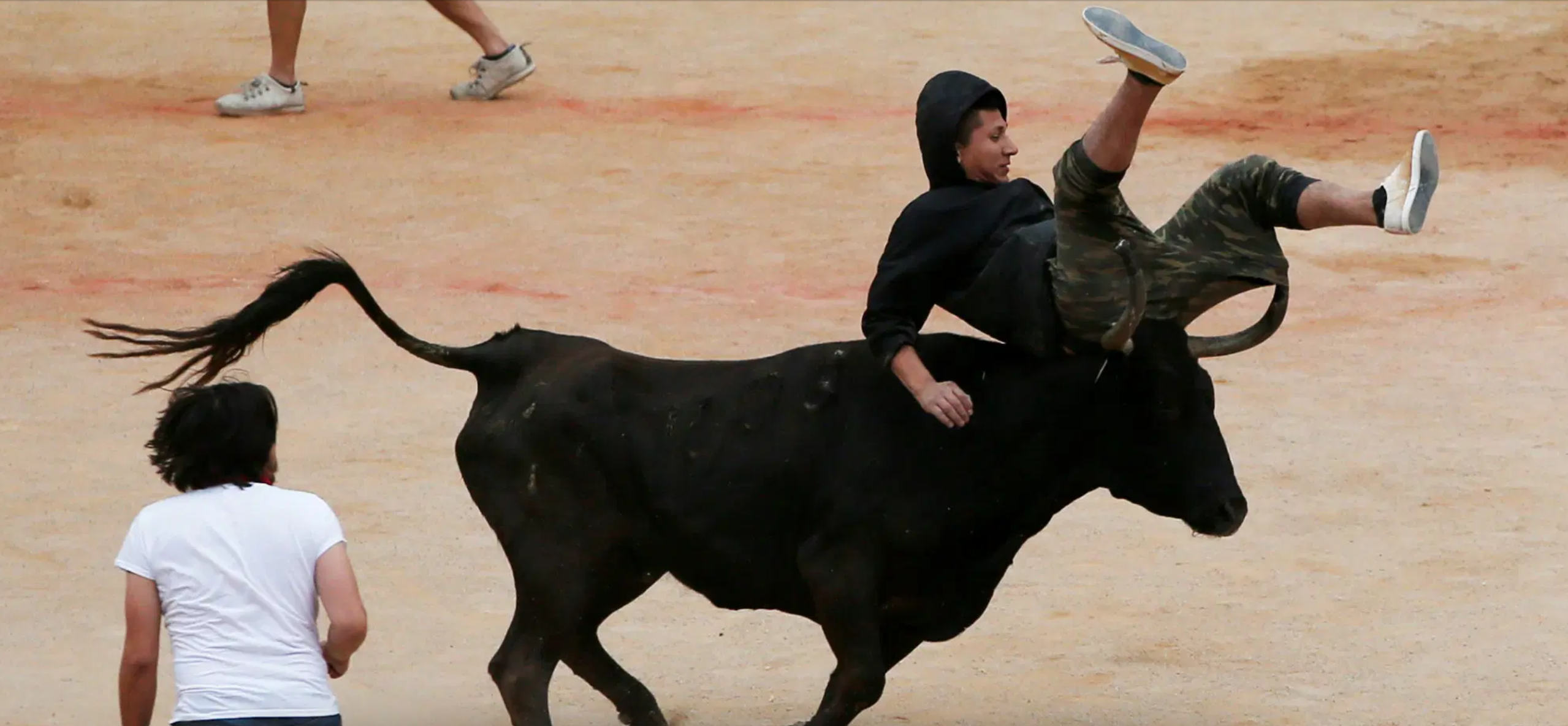 a person is thrown into the air by a bull