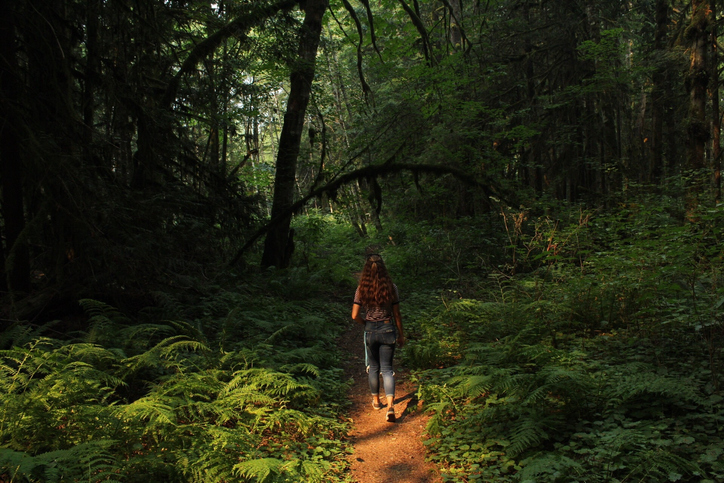rear view of a woman walking into a green and lush forest