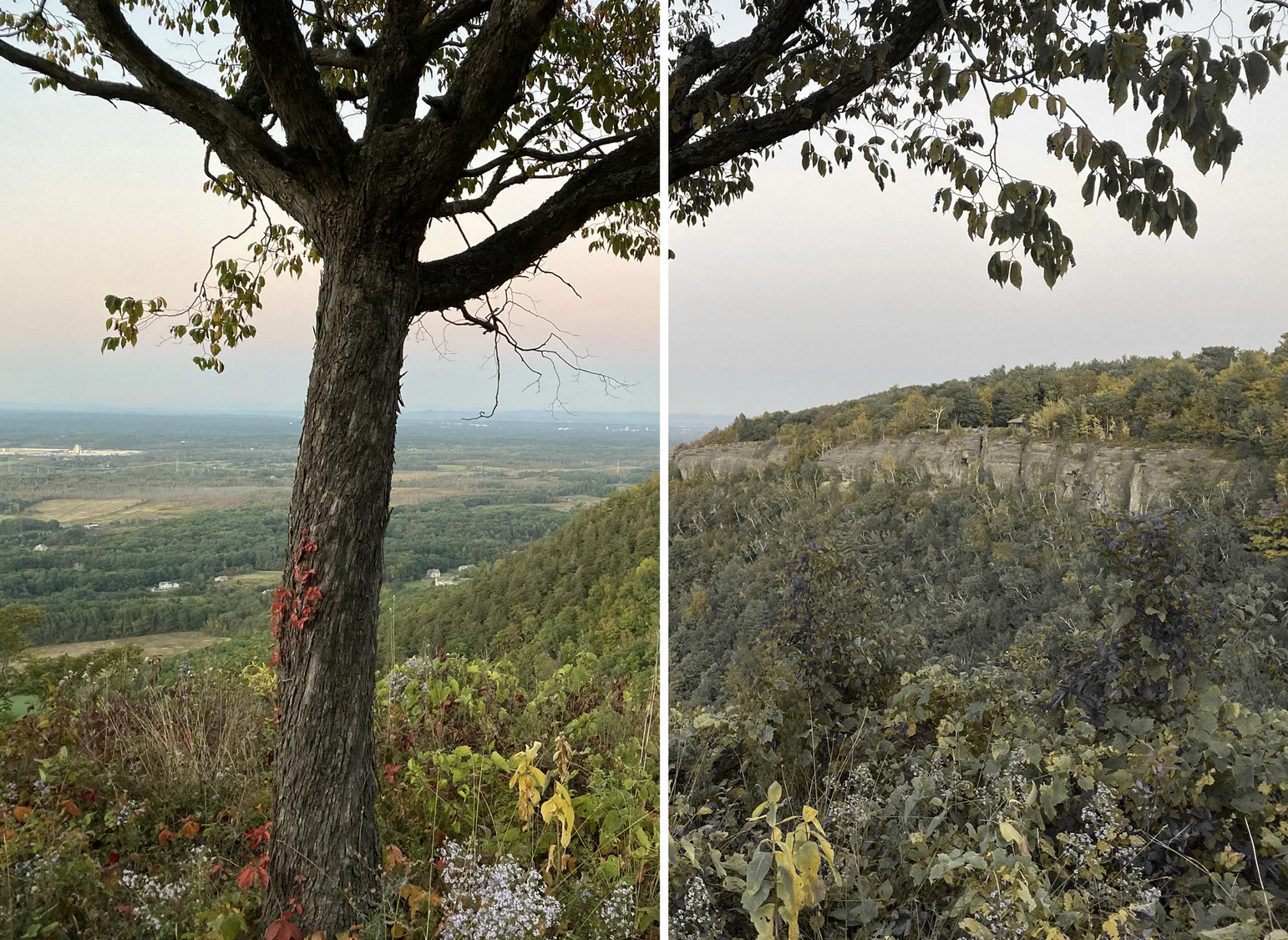 side-by-side shots of scenery that shows color variation